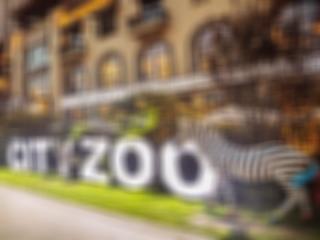 CITYZOO - 靠谱投 - 投资天天排队的同城餐饮